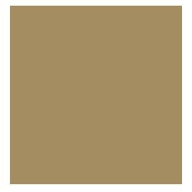 Dra. Alessandra Zawadzki